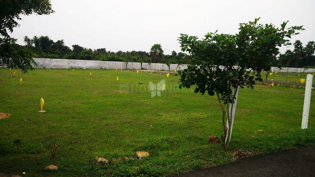 Project Image of 998.0 - 2400.0 Sq.ft Residential Plot Plot for buy in Accord Tejas Enclave