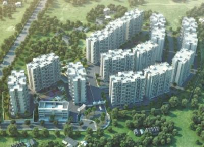 Gallery Cover Pic of Pate Life Maxima Phase 2