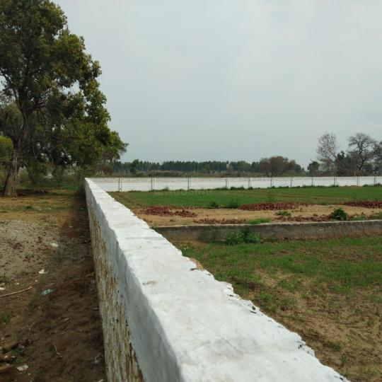 Project Image of 450.0 - 10350.0 Sq.ft Residential Plot Plot for buy in Shubham Jewar City
