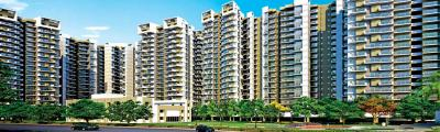 Project Image of 1185 Sq.ft 3 BHK Apartment for buyin Noida Extension for 4500000