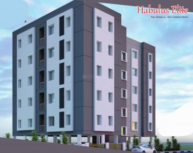 Project Image of 940.0 - 1175.0 Sq.ft 2 BHK Apartment for buy in Habulus Elite