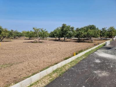 Project Image of 600.0 - 2415.0 Sq.ft Residential Plot Plot for buy in Kris Farms