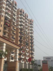 Gallery Cover Image of 1597 Sq.ft 3 BHK Apartment for rent in Tanishq, Raj Nagar Extension for 12000