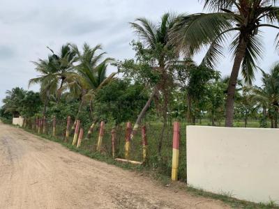 Project Image of 1200 - 2352 Sq.ft Residential Plot Plot for buy in Sri Arunachaleswarar Nagar