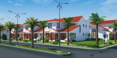 Project Image of 4773.0 - 5946.0 Sq.ft 4 BHK Villa for buy in Jain Tijuana