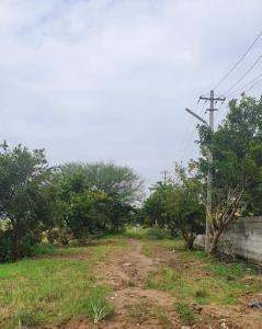Project Image of 0 - 2400.0 Sq.ft Residential Plot Plot for buy in Neeraj Meches