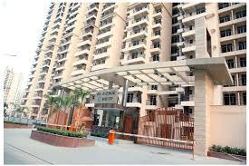 Gallery Cover Image of 500 Sq.ft Studio Apartment for rent in Ajnara Elements by Ajnara India Ltd., Sector 137 for 15000