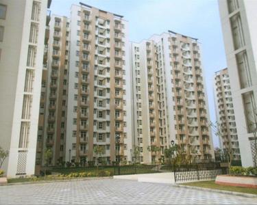 Gallery Cover Image of 800 Sq.ft 2 BHK Apartment for rent in Shree Vardhman Mantra, Sector 90 for 19000