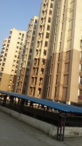 Gallery Cover Image of 1000 Sq.ft 3 BHK Apartment for rent in SVP Gulmohur Garden, Raj Nagar Extension for 8500