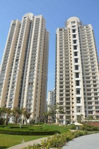 Gallery Cover Image of 1550 Sq.ft 3 BHK Apartment for buy in ATS Dolce, Zeta I Greater Noida for 6300000