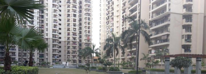 Project Image of 925.0 - 1755.0 Sq.ft 2 BHK Apartment for buy in Galaxy North Avenue II