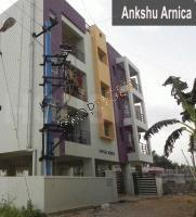 Ankshu Ankshu Arnica
