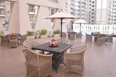 Gallery Cover Image of 507 Sq.ft 1 RK Apartment for rent in Nimbus The Golden Palms, Sector 168 for 16000