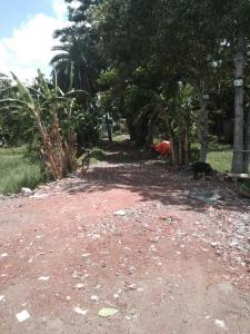Project Image of 720.0 - 2880.0 Sq.ft Residential Plot Plot for buy in Ashirwad Society