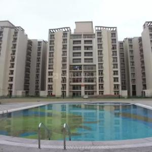 Project Image of 1664 - 1806 Sq.ft 3 BHK Apartment for buy in Ansal Tulip And Carnation