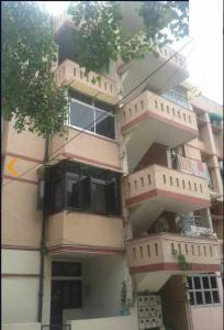 Gallery Cover Image of 1200 Sq.ft 3 BHK Apartment for rent in Vishwakarma Apartment, Vasundhara Enclave for 24000