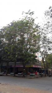 Gallery Cover Image of 2210 Sq.ft 3 BHK Villa for rent in Vijay Garden Complex, Thane West for 65000