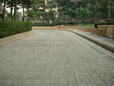 Gallery Cover Image of 2450 Sq.ft 3 BHK Apartment for buy in Vipul Belmonte, Sector 53 for 29500000