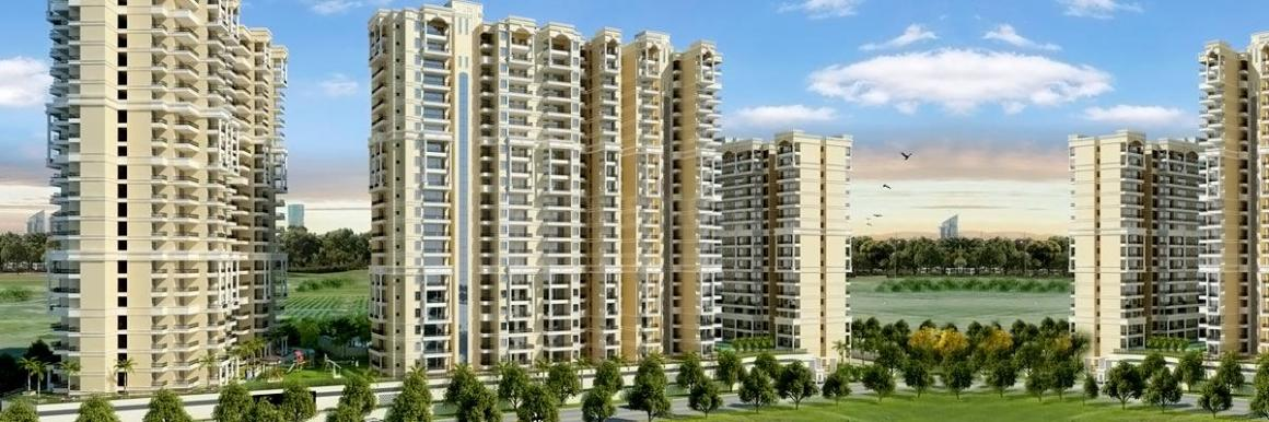 Migsun Roof In Raj Nagar Extension Price Reviews