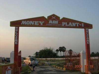 ABI Money Plant