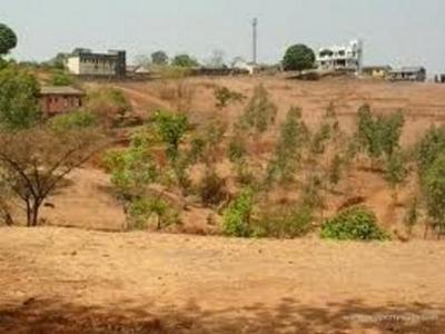 Gallery Cover Image of 538 Sq.ft Residential Plot for buy in DLF Alameda, Sector 73 for 34900000