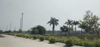 Project Image of 394 - 4363 Sq.ft Residential Plot Plot for buy in Godha Estate Premium