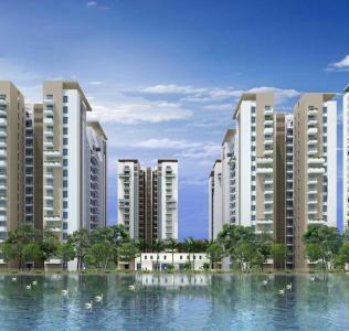 Project Image of 2504 - 6440 Sq.ft 4 BHK Apartment for buy in Adani Shantigram LA Marina