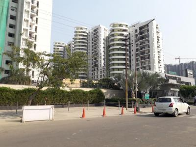 Gallery Cover Image of 1420 Sq.ft 2 BHK Apartment for rent in Sector 119 for 17000