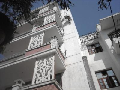 Project Image of 0 - 1300.0 Sq.ft 3 BHK Apartment for buy in Vishesh Floors