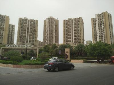 Gallery Cover Image of 950 Sq.ft 2 BHK Apartment for rent in Paras Tierea, Sector 137 for 18000
