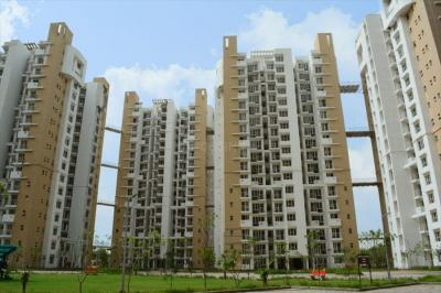 Gallery Cover Image of 500 Sq.ft 1 BHK Apartment for rent in Logix Blossom Greens, Sector 143 for 13000