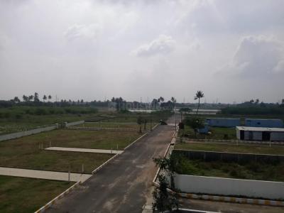 Project Image of 800.0 - 3186.0 Sq.ft Residential Plot Plot for buy in Muktha Our Eden