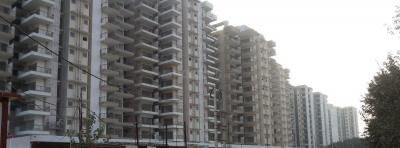 Gallery Cover Image of 600 Sq.ft 1 BHK Apartment for rent in Sector 82 for 5000