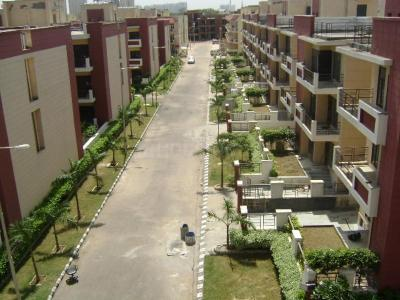 Gallery Cover Image of 1525 Sq.ft 3 BHK Apartment for buy in M2K Symphony Floors, Sector 51 for 9200000
