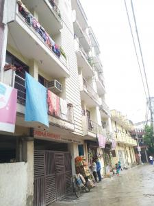 Gallery Cover Image of 300 Sq.ft 1 BHK Apartment for rent in Shubham Apartments Ghitorni, Ghitorni for 7000