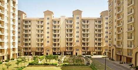 Project Image of 1450.0 - 1950.0 Sq.ft 3 BHK Apartment for buy in Emaar Palm Hills