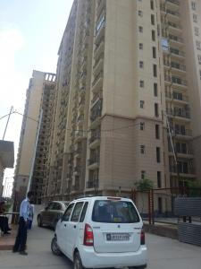 Gallery Cover Image of 1100 Sq.ft 3 BHK Apartment for rent in Wave City for 8000