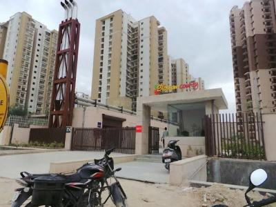 Gallery Cover Image of 1040 Sq.ft 2 BHK Apartment for rent in Logix Blossom County, Sector 137 for 18000