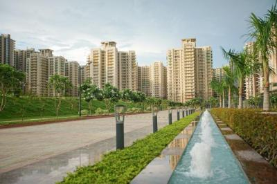 Gallery Cover Image of 1317 Sq.ft 3 BHK Apartment for rent in Palm Olympia, Noida Extension for 11000