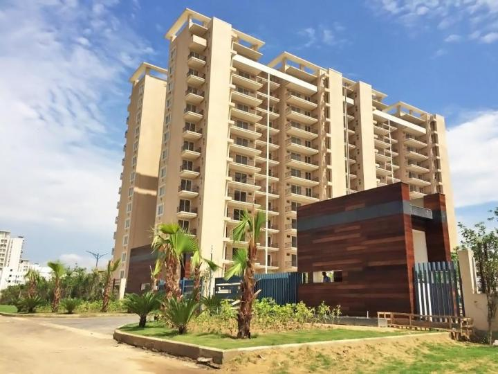 Project Image of 0 - 2400.0 Sq.ft 4 BHK Apartment for buy in Tulip Purple
