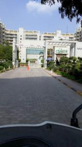 Gallery Cover Image of 1800 Sq.ft 3 BHK Independent Floor for buy in Mahindra Chloris, Sector 19 for 12200000