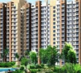 Gallery Cover Pic of DLF Chisholm Apartments