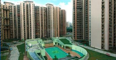 Gallery Cover Image of 1445 Sq.ft 3 BHK Apartment for rent in Pan Oasis, Sector 70 for 18000