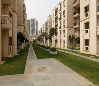 Gallery Cover Image of 1000 Sq.ft 2 BHK Apartment for rent in Sare Royal Greens, Sector 92 for 12000