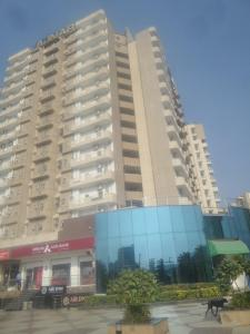 Gallery Cover Image of 1115 Sq.ft 2 BHK Apartment for rent in Sector 137 for 13000