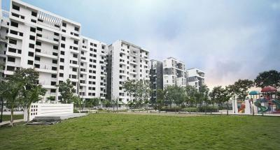 Project Image of 730.0 - 774.0 Sq.ft 2 BHK Apartment for buy in Venkatesh Graffiti