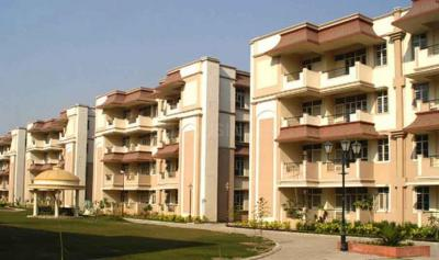 Gallery Cover Image of 1600 Sq.ft 3 BHK Apartment for buy in Ashiana Black Gold Apartments, Omega IV Greater Noida for 6000000