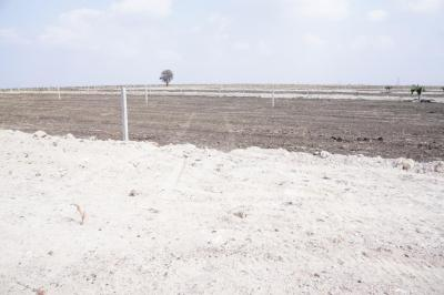 Project Image of 0 - 2178.0 Sq.ft Residential Plot Plot for buy in SB Lotus Park