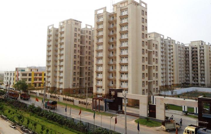 Project Image of 1137.0 - 1437.0 Sq.ft 3 BHK Apartment for buy in Tulip Orange