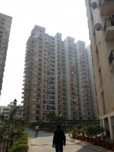Gallery Cover Image of 1100 Sq.ft 2 BHK Apartment for rent in Panchsheel Primrose, Govindpuram for 10500